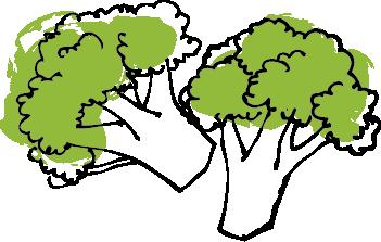 Broccolie